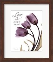 Framed Blackberry Tulips, Love