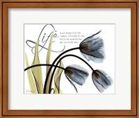 Framed Mineral Blue Tulips...Life