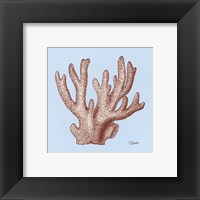 Framed Coral I