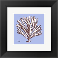 Framed Coral III