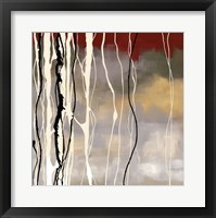 Silver Birch II Framed Print