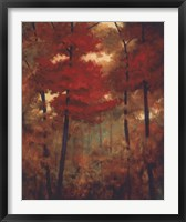 Framed Autumn Woods