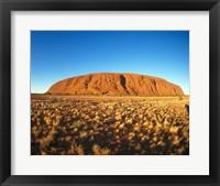 Framed Ayers Rock, Uluru-Kata Tjuta National Park, Australia