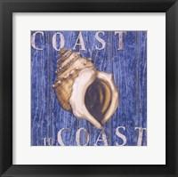 Framed Coastal USA Conch