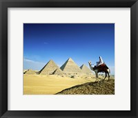 Framed Man riding a camel near the pyramids, Giza, Egypt