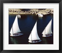 Framed Sailboats in a river, Nile River, Aswan, Egypt