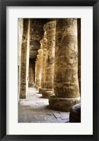 Framed Hieroglyphics,Temples of Karnak, Luxor, Egypt