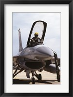 Framed U.S. Air Force  F-16 Falcon Jet Fighter
