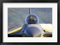 Framed F-16 Fighter Jet US Air Force