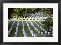Framed Arlington National Cemetery Arlington Virginia USA
