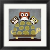 Framed Three Owls on Turtle