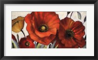 Framed Poppy Splendor I