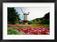 Framed Low angle view of a windmill in a park, Golden Gate Park, San Francisco, California, USA