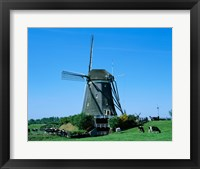 Framed Windmill and Cows, Wilsveen, Netherlands Photograph