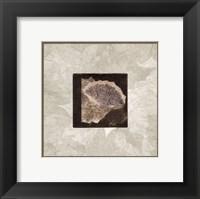 Framed Ginko Leaf