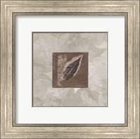 Framed Elm Leaf