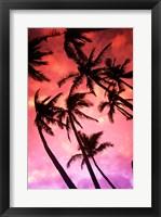 Framed Kauai Hawaii Palm Tree Silhouette Sunset