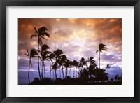 Framed Lydgate State Park Kauai Hawaii USA