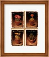 Framed Cacti