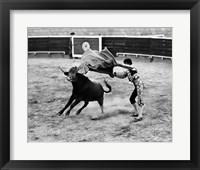 Framed Matador fighting with a bull