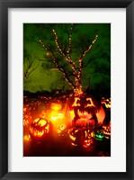 Jack o' lanterns lit up at night, Roger Williams Park Zoo, Rhode Island Framed Print
