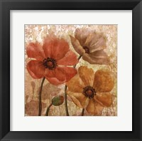 Framed Poppy Allure I