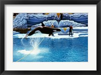 Framed Shamu-Killer Whale Sea World San Diego California USA
