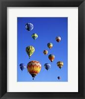 Framed Hot air balloons rising, Albuquerque International Balloon Fiesta