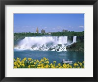 Framed Flowers in front of a waterfall, American Falls, Niagara Falls, New York, USA
