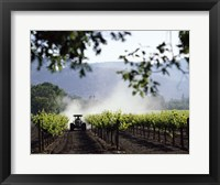 Framed Tractor in a field, Napa Valley, California, USA
