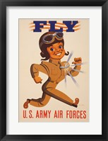 Framed Fly U.S. Army Air Forces