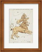 Framed Leo Major and Leo Minor Constellation