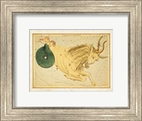 Framed Capricornus Zodiac Sign