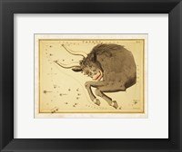 Framed Taurus Zodiac Sign