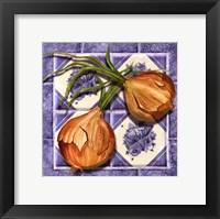 Framed Onion Tile