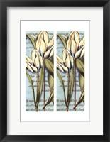 Framed 2up French Tulip I