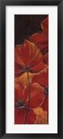 Midnight Poppy I Framed Print