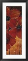 Framed Midnight Poppy II