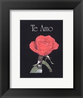 Framed I Love You - Spanish