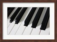 Framed Piano Keys