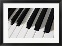 Framed Piano Keys