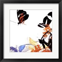 Framed Butterfly Infloresence IV