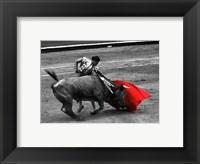 Framed Red Matador III