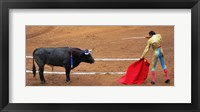 Framed Bull and Matador Stand Off