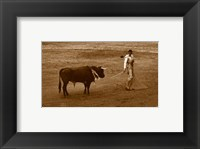 Framed Matador and Bull