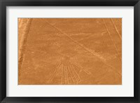 Framed Nazca Lines Design