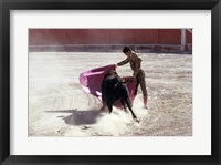 Framed Matador fighting with a bull, Spain