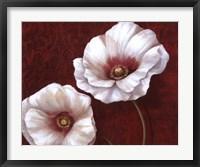 Framed Prized Blooms II