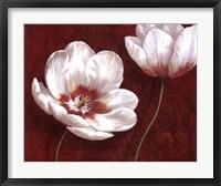 Framed Prized Blooms I