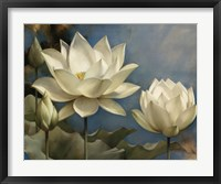 Framed Lotus I
